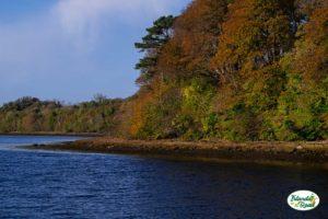 Laguna di Donegal Town
