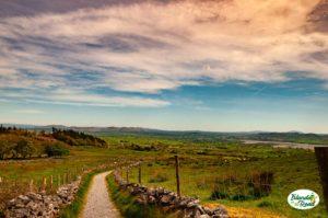 Il sentiero che porta in cima a Knocknarea